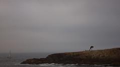Cuerno de la Abundancia. La Corua (Cauldrn) Tags: sea espaa costa mist fog clouds coast boat mar seaside corua rocks barco darkness yacht galicia nubes horn niebla rocas lacorua yate cuernodelaabundancia canoneos550d rebelt2i kissx4 costaescura