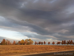 November 7, 2014 - Gorgeous clouds at sunrise. (David Canfield)