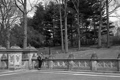 XE1-04-09-13-225 (a.cadore) Tags: nyc newyorkcity blackandwhite bw zeiss centralpark candid fujifilm carlzeiss xe1 zeissbiogon35mmf2 biogont235 fujifilmxe1