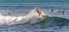 Wave Rider! (cmalefyt ... Please check out my albums!) Tags: pacific pacificocean hawaii oahu honolulu islands topics chuckmalefyt nikon nikond4s d4s harbors honoluluharbor nikkor80400mm nikon80400mm surfing surf alamoanabowls bowls alamoanamagicisland magicisland
