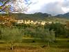 Roccasecca  FR (Tilly Sfortunato) Tags: garden niceshot roccasecca beautifulshot