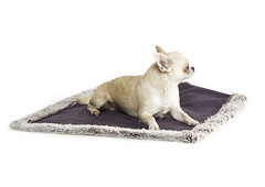 15 (AlwaysMine Milano) Tags: pets dogs fashion for mine milano always cashmere luxury