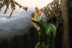 DSC02728-2 (benrobinsonnz) Tags: tepapa dinosaurs