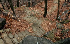 DSC_0022 (Alex Grimes) Tags: life beautiful stairs nipples boobs hiking sunday great nj funday palisades