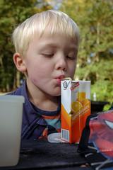 Concentration (Poul-Werner) Tags: family autumn denmark picnic familie danmark pwd efterr skovtur holstebro centraldenmarkregion vestreplantage poulwernerdam
