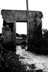Reto Puertas - Puerta al Pasado ( Paula ) Tags: door blanco puerta negro maremoto mariscadero