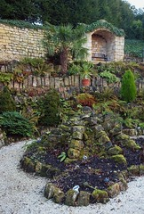 2015_01_0058 (petermit2) Tags: fern garden yorkshire doncaster southyorkshire englishheritage brodsworth brodsworthhall ferngarden