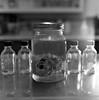 Heartworm (Elizabeth Ann Aguilera) Tags: new bw 120 self mexico heart kodak trix albuquerque 400tx cm hasselblad medium format 500 developed disease heartworm 1m 80mm proxar