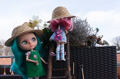 Blythe A Day 18 January 2015 - Show your hat