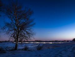 Empel, my village #24 (Ingeborg Ruyken) Tags: winter sky snow tree night sunrise dark stars dawn flickr december darkness nacht sneeuw meadow boom lucht dyke dijk weiland ochtend donker facebook sterren empel zonsopkomst natuurfotografie 500px empelsedijk maximakanaal