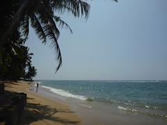 Aluthgama Beach (★ Percy Germany™ ᵀᴴᴱ ᴼᴿᴵᴳᴵᴻ) Tags: whitesands whitesand percygermany 512015 aluthgamabeach beachaluthgama onthebeachaluthgama beachsitealuthgama