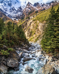 Autumn Landscape, Bhratang, Annapurna Circuit, Nepal (Feng Wei Photography) Tags: travel nepal mountain color beautiful vertical forest trek river landscape asia outdoor scenic valley annapurnacircuit marsyangdi annapurna himalayas manang gandaki chame bhratang marshyangdi annapurnaconservationarea