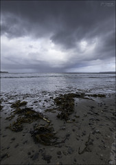 Between Two Headlands (North Light) Tags: sea seaweed beach weather clouds squall scotland caithness thursobay thursobeach