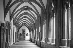 Kreuzgang1 (uschmidt2283) Tags: a7r architektur blumen esb mainz natur spiegelungen stdte