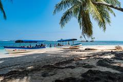 Island Zapatilla Panama