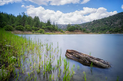 The log (Alex Apostolopoulos) Tags: longexposure trees sky lake green water clouds log dam sony cyprus reservoir stump float sel16f28 sonye16mmf28 ilce6000 sonya6000