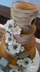 buttercream tree bark cake (RebeccaSutterby) Tags: flowers wedding tree cake rustic sugar bark birch buttercream gumpaste airbrushed