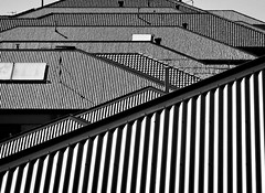 New Suburbia (phunnyfotos) Tags: phunnyfotos australia victoria vic roof roofs tiles corrugated colorbond light shadow grooves pattern patterns texture suburban suburbia urban nikon p600 nikoncoolpixp600 roofing housing residential houses homes house mono bw monotone solarpanels antenna antennae flue flues vents corrugatedroof