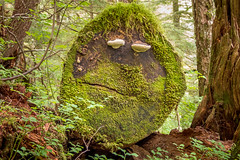 Log Face (Lee Edwin Coursey) Tags: 2016 alaska ketchikan uncruise unitedstates adventure cruise face landscape log nature town travel tree