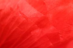 Wrinkled Red Petal Texture (gripspix (OFF)) Tags: 20160605 nature natur plant pflanze blte blossom poppy mohn klatschmohn papaverrhoeas petal bltenblatt texture textur