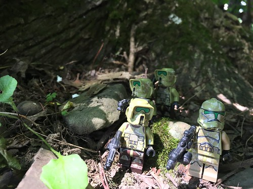 Forest troopers