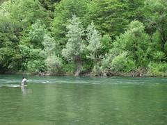 Trinity Fly Fishing (blmcalifornia) Tags: trinity wild scenic river rafting fishing fly