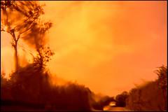 20150812-001 (sulamith.sallmann) Tags: auto baum blur blurry bume car effects effekt europa fahrzeug fahrzeuge folieneffekt folientechnik france frankreich linse normandie orange pflanze pflanzen pkw plant plants road strase street traffic transportmittel tree trees unscharf unschrfe unsharp vehicle verkehrsmittel verschwommen way weg fra