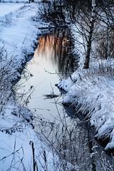 Zalazak sunca (Jori Samonen) Tags: winter sunset plants snow reflection water finland helsinki viikki