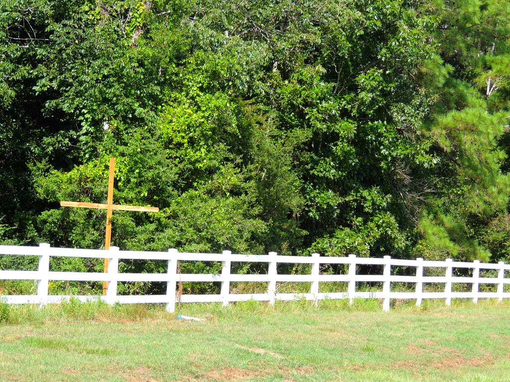 Christmas Tree Farm Magnolia Tx