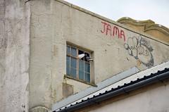 Sneaking your bird into the flicks (sasastro) Tags: regentcinema odeoncinema abandoned empty brokenwindows colchester essex uk pigeons jama tags grafitti pentaxk5iis grot