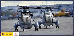Spotter Day Aire75 (Ejército del Aire Ministerio de Defensa España) Tags: de base aérea aviones aerobatic acrobacias torrejón aire75