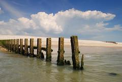 East Wittering - Sussex (Mark Wordy) Tags: wood beach clouds coast westsussex groyne eastwittering