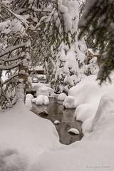DSC08110_s (AndiP66) Tags: schnee winter panorama snow mountains water schweiz switzerland stream wasser view mark sony sigma berge bach ii they alpha aussicht 77 wallis sentier valais swissalps morgins 2014 portesdusoleil raquettes schweizeralpen 1835mm andreaspeters 77m2 a77ii ilca77m2 77ii slta77ii chemindesponts