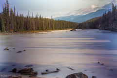"""Lake downstream of Athabasca Falls • <a style=""""font-size:0.8em;"""" href=""""http://www.flickr.com/photos/92159645@N05/15615220593/"""" target=""""_blank"""">View on Flickr</a>"""