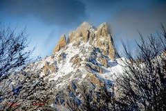El Friero (LANTADA) Tags: nieve montaa picosdeeuropa estampitas
