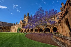 tower college architecture hall sandstone university main great gothic sydney australia quad tudor clocktower musical instrument uni musicalinstrument perpendicular quadrangle sydneyuni universityofsydney collegiate carillon sydneyuniversity greathall gothicarchitecture prestige perpendiculargothic usyd sydneyaustralia greattower mainquadrangle perpendiculargothicarchitecture tudorgothic collegiatearchitecture tudorgothicarchitecture jacardn