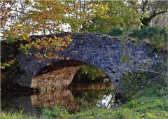 LW 311 (cadayf) Tags: bridge fall architecture automne landscape countryside 33 pont paysage campagne ouvrage hautegironde