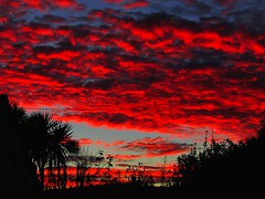 Autumn Sunset (sam2cents) Tags: ireland red sky cloud garden colours wicklow