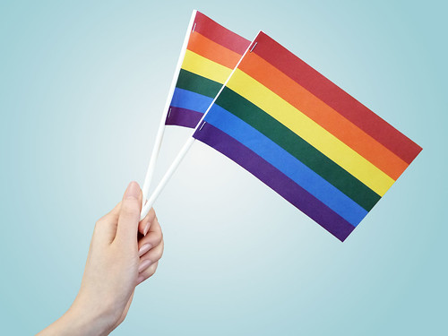 Pride Paper Stick Flags