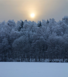 Misty Winter Sun 2