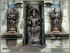 4813- Lingodbhavamurti at Pennadam Thoonganaimadam (திருத்தூங்கானை மாடம்) 04 (chandrasekaran a 40 lakhs views Thanks to all) Tags: india buildings vishnu sony structures hinduism tamilnadu brahma templeart gopurams appar vridhachalam padalpetrasthalam sundarar templesarchitecturesscuptures pennadam thevaram sambandhar saivaism thirumuraitemples thoonganaimadam mudhukundram figuralgopuram lingodbhavamurti பிரளயகாலேசுவரர்கோயில் திருத்தூங்கானை மாடம்