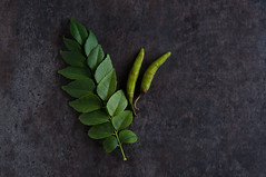 Curry leaves and green chiles (.Manisha.) Tags: chile chiles curryleaves 1530 greenchile indianfoodrocks kadipatta