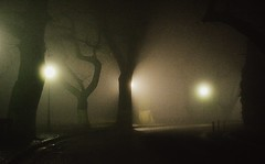 Fog (PattyK.) Tags: trees winter fog night nikon december silhouettes hellas lakeside greece balkans whereilive lakefront mycity ilovephotography ellada  ioannina giannina giannena epirus coldnight bythelake  ipiros  lovelycity        nikond3100