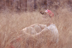 (gipsas) Tags: boy summer holiday nature youth forest evening holidays meadow warmth cap indie grassland lithuania grla