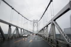 NEWYORK-335