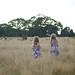 Deer Stalking by Jamie Kitson