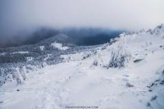 Carpatians (o.o.i) Tags: mountains nature landscape ukraine adventure explore mountaineering поход природа пейзаж горы carpatians путешествия карпаты альпинизм