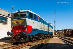 E.656.023 FS (Andrea Sosio) Tags: train italia liguria treno 023 migliarina fs trenitalia laspezia deposito ferroviedellostato e656 caimano nikond60 andreasosio