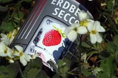 first fruits (Knarfs1) Tags: green fruits garden strawberry garten frchte prosecco erdbeer