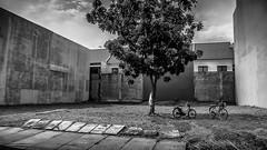 Lifecycles (erikjnainggolan) Tags: bw white man black hot monochrome work day working n olympus pocket bycicle cike xz10